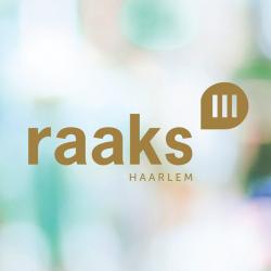 Nieuwbouwproject Raaks 3 Haarlem